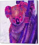 Purple Koala Canvas Print