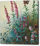 Purple Loosestrife And Watermind Canvas Print