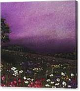 Purple Meadow Canvas Print