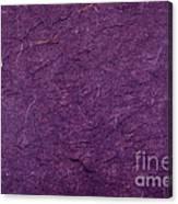 Purple Mulberry Paper  Canvas Print
