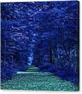 Purple Nature Canvas Print