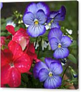 Purple Pansy Flowers By Line Gagne Canvas Print