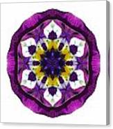 Purple Pansy II Flower Mandala White Canvas Print