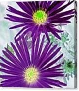 Purple Passion - Photopower 1604 Canvas Print