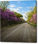 Purple Road Canvas Print
