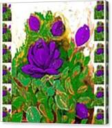 Purple Roses From The Garden 2 Canvas Print