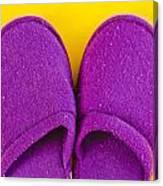 Purple Slippers Canvas Print