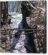 Purple Stream Canvas Print