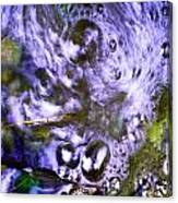 Purple Swoosh Canvas Print