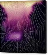 Purple Web Of Lies Canvas Print
