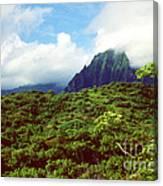 Puu Piei Trail Koolau Mountains Canvas Print