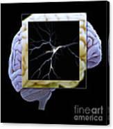 Pyramidal Neuron And Brain Canvas Print