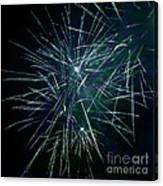 Pyrotechnic Delight Canvas Print