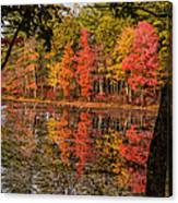 Quabbin Reservoir Fall Foliage Canvas Print
