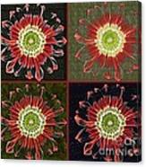 Quatro Floral - 0102cba Canvas Print