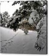 Queen City Winter Wonderland After The Storm Series 0029 Canvas Print