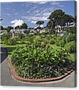 Queen Mary Gardens - Falmouth Canvas Print