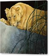 Queen Of The Jungle... Canvas Print