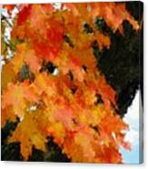 Quick Take On Autumn Canvas Print