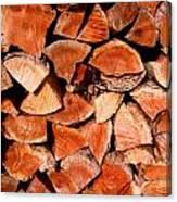Quick Trick Wood Stack Canvas Print
