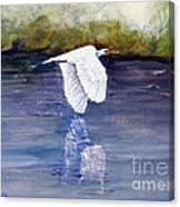 Quiet Flight Canvas Print