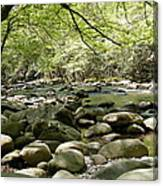 Quiet Place In The Smokies Canvas Print