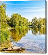 Quiet River With Trees Canvas Print