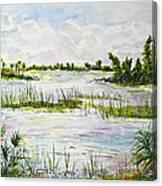 Quiet Waters Park Deerfield Beach Fl Canvas Print