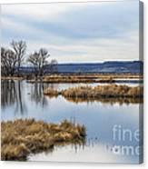 Quiet Wetlands Canvas Print
