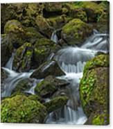 Quinault Waterfall Canvas Print