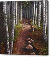 Quoddy Trail Close Crop Canvas Print