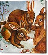 Rabbits In Snow Canvas Print