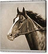 Race Horse Old Photo Fx Canvas Print
