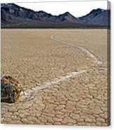 Racetrack Sailing Rocks Death Valley National Park Canvas Print