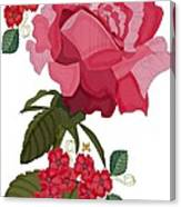 Rad Pink And Red Rose Canvas Print