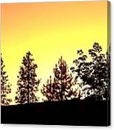 Radiance Of Nature Canvas Print