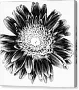 Radiant Solarized Canvas Print