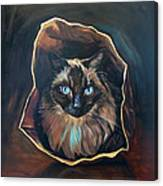 Cat Painting. Ragdoll Cat The Cat's In The Bag Canvas Print