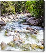 Rageing River Below Falls Canvas Print