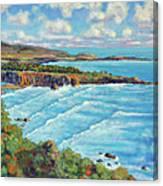 Ragged Point California Canvas Print