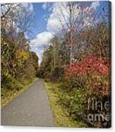 Rail Trail Canvas Print