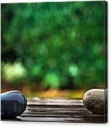 Rain Again Canvas Print