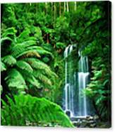 Rain Forest And Waterfall Canvas Print