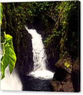 Rain Forest Grotto With 2 Waterfalls Canvas Print
