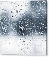 Rain In Winter Canvas Print