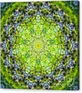 Lluvia Mandala Canvas Print