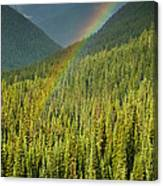 Rainbow And Sunlit Trees Canvas Print
