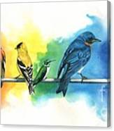 Rainbow Birds Canvas Print