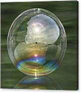 Sun Halo Rainbow Bubble Canvas Print
