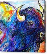 Rainbow Buffalo Canvas Print